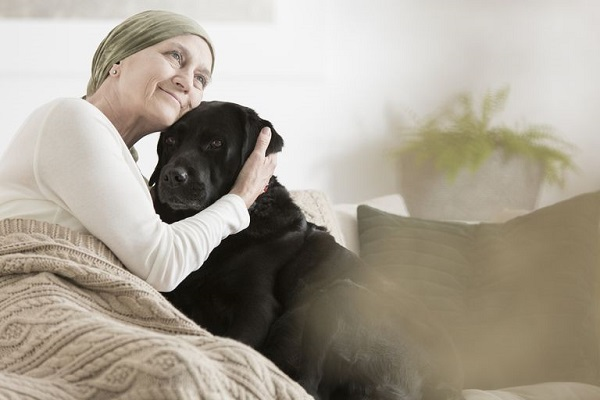 Image of Sick Old Lady keep her dog on sofa during his therapy on cancer treatment.