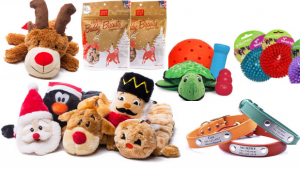 Image That Showing The Pet Dog Treats and Toys.