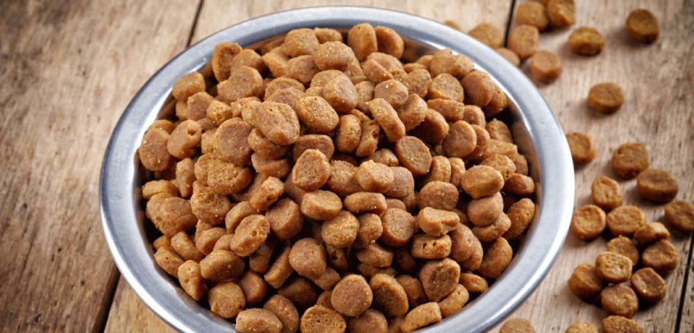 A Bowl Full Of Dog Food.